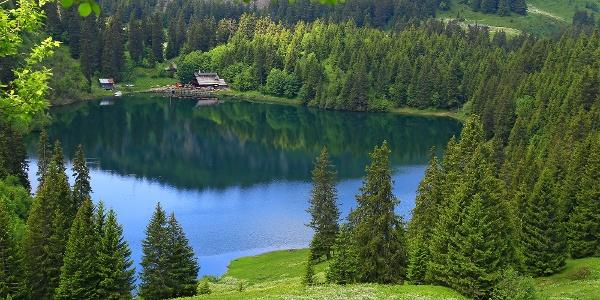 Lac des Chavonnes.