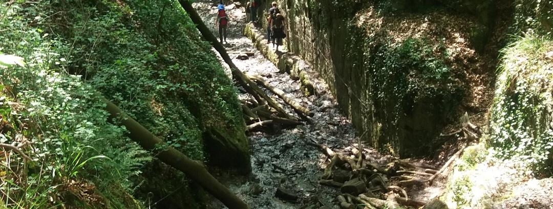 Tieferer Einschnitt: hier fällt der Bach über Stufen.