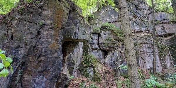 Wilde Felsenwelt unterhalb der Kleinen Bastei bei Krippen