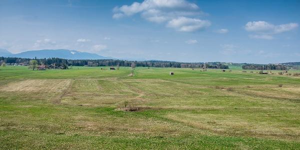 Landschaftsschutzgebiet Haarmoos