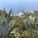 Küste hinter Las Aguas