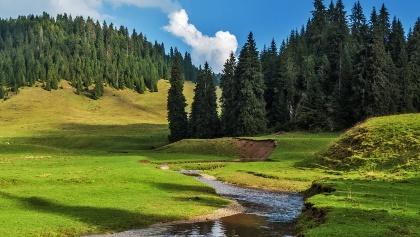 Transylvania Landscape