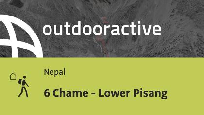 Fernwanderweg in Nepal: 6 Chame - Lower Pisang