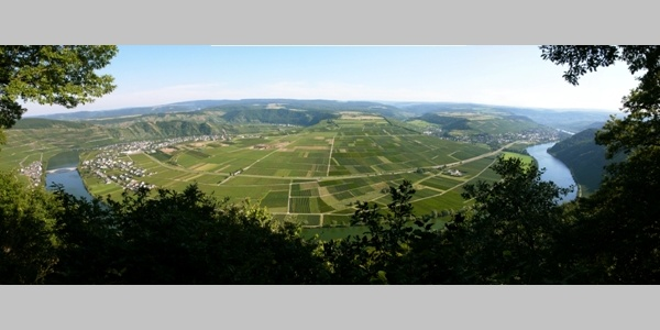 "Panorama ""Großer Moselblick"""
