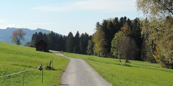 Weg ins Naturschutzgebiet Nord