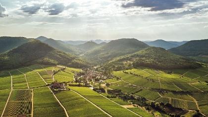 Luftbild Leinsweiler