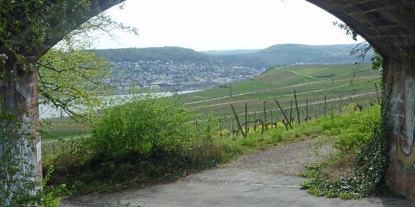 Blick durch Viadukt der ehemaligen Zahradbahn
