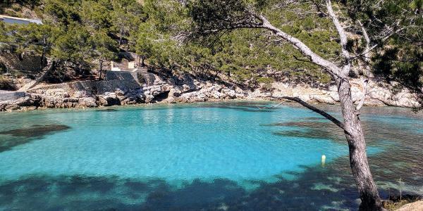 Cala Murta lädt zum Schwimmen ein
