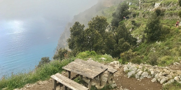 Picnic Bench with a View