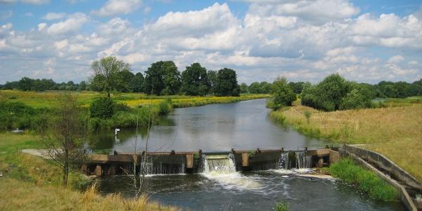 Steinhorster Becken