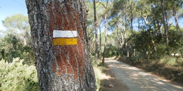 El sendero marcado a las afueras de Llafranc