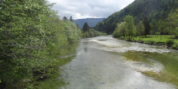 Sava-Bohinjka