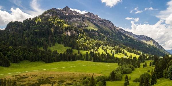 Schönenbach im Bregenzerwald