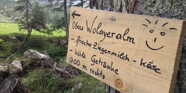 Obere Wolayeralm am Karnischen Höhenweg - eine Einladung