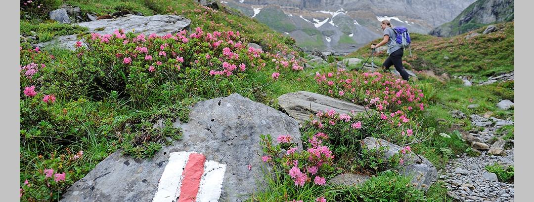 Wanderweg zur Fridolinshütte