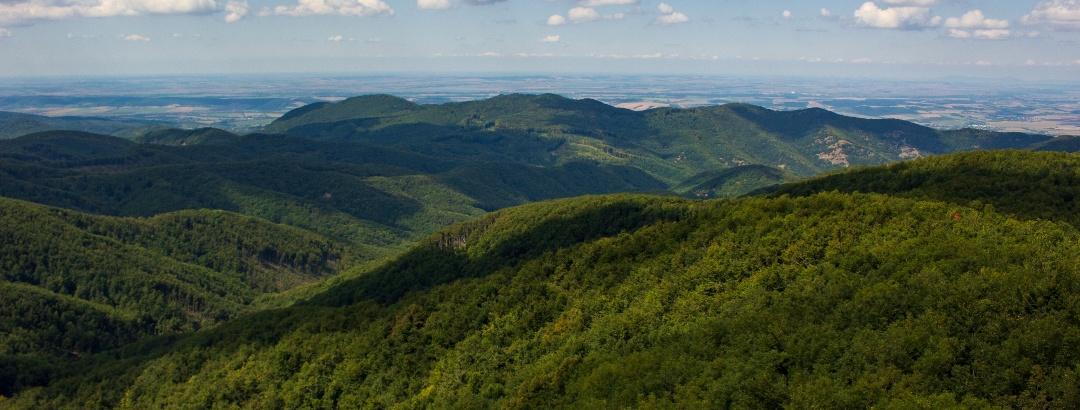 Kilátás a csóványosi toronyból a Holló-kő-gerinc és az Ipoly-völgy irányába