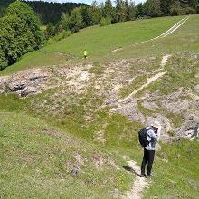 Magerrasen am Steinberg