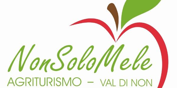 Logo_NonSoloMele_1