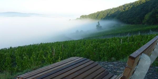 Nebel im Moseltal an der Klüsserather Wetterstation