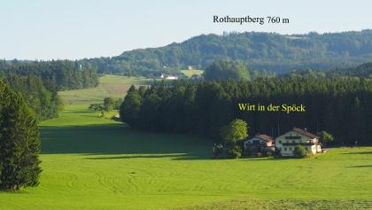 Wenig später sieh man auch das Ziel der Wanderung den Rothauptberg im Hausruckwald