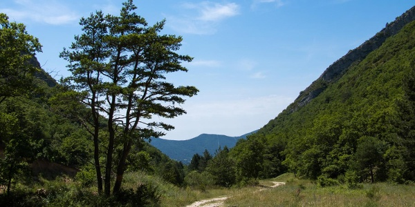 Wanderweg im Luberon