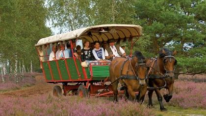 Kutscher Wolter bei einer Planwagenfahrt durch die Nemitzer Heide