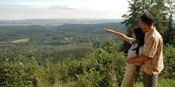 Blick auf Reinhardsbrunn
