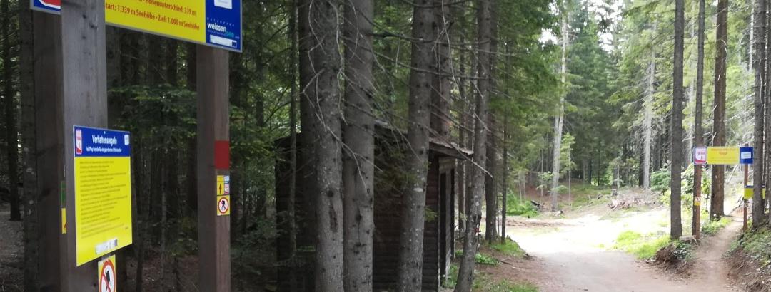 Traileinfahrt bei der Bergstation