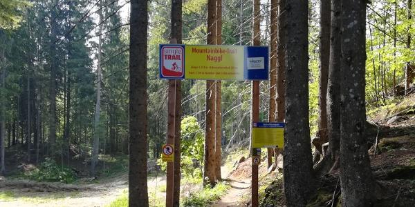 Traileinfahrt