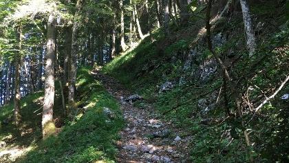 Alter Weg zum Pilgerstuhl