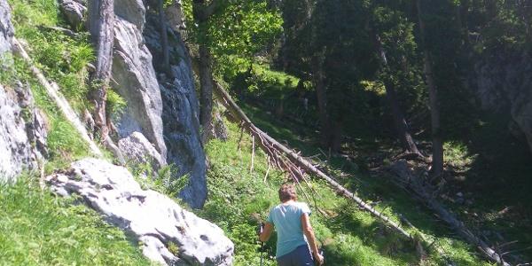 Steilgrabenanstieg