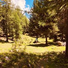 Richtung Lai da Valpaschun von Alp Tabladatsch