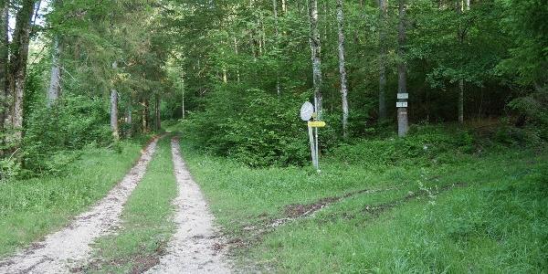 nach ca. 1km hier rechts abbiegen