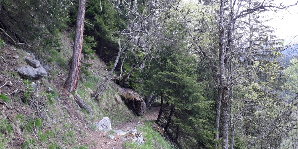 "Wanderung vom Fieschertal über Fiesch nach Lax via ""Laggeraweg"""