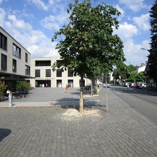 Ausgangspunkt Marktplatz Rankweil, Bushaltestelle
