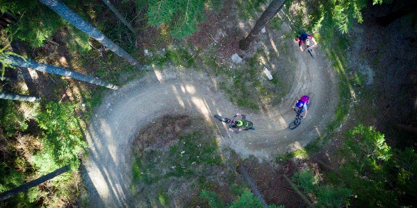 Uphill Flowtrail by Wexl Trails