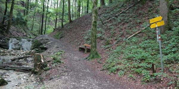 Hier ginge es geradeaus auf den Grasberg. Wir zweigen rechts ab zum Gmundnerberg.