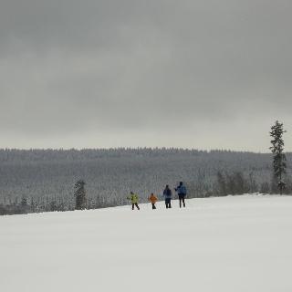 Langlauf in Altenau