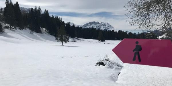 Winterwanderweg Finsterwald-Wissenegg