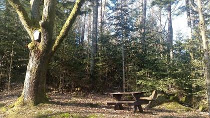 Table près de la Vierge des Bois