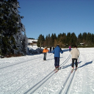 Langlauf in Sankt Andreasberg