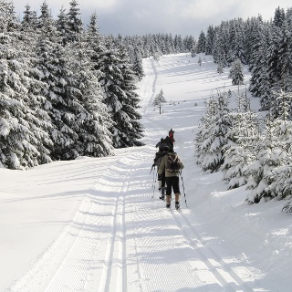 Langlauf in Schierke