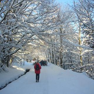 Wanderung im Winter Foto: Stadtmarketing Bad Harzburg