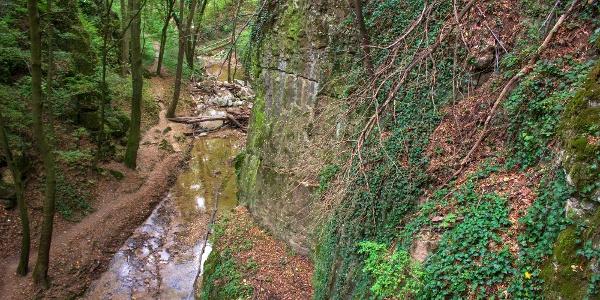 A Római-fürdő felé, a Gaja-patak mentén