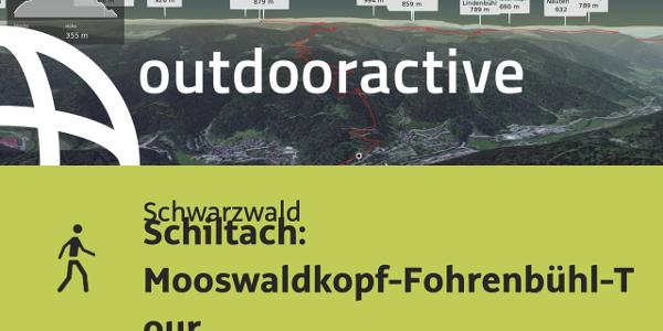 Wanderung im Schwarzwald: Schiltach: Mooswaldkopf-Fohrenbühl-Tour