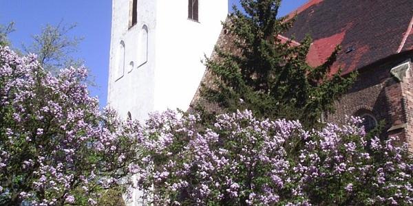 Kirche Bad Schmiedeberg