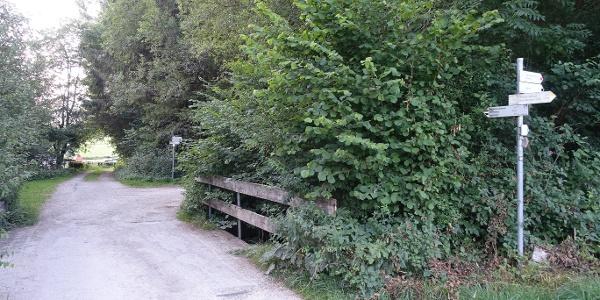 Zweiter Abzweig über der Brücke in Richtung Reichenbachklamm