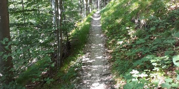 Hahnenkopfweg Richtung Zwei-Seen-Blick