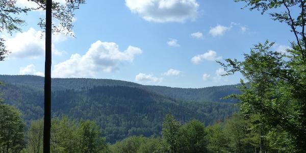 Blick über die Südharzer Wälder