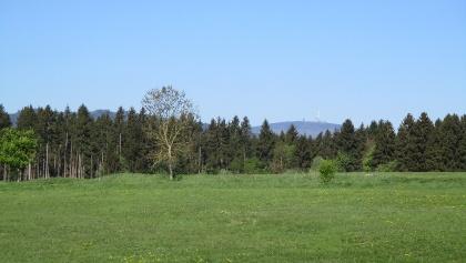 Ausblick von Elbingerode zum Hochharz